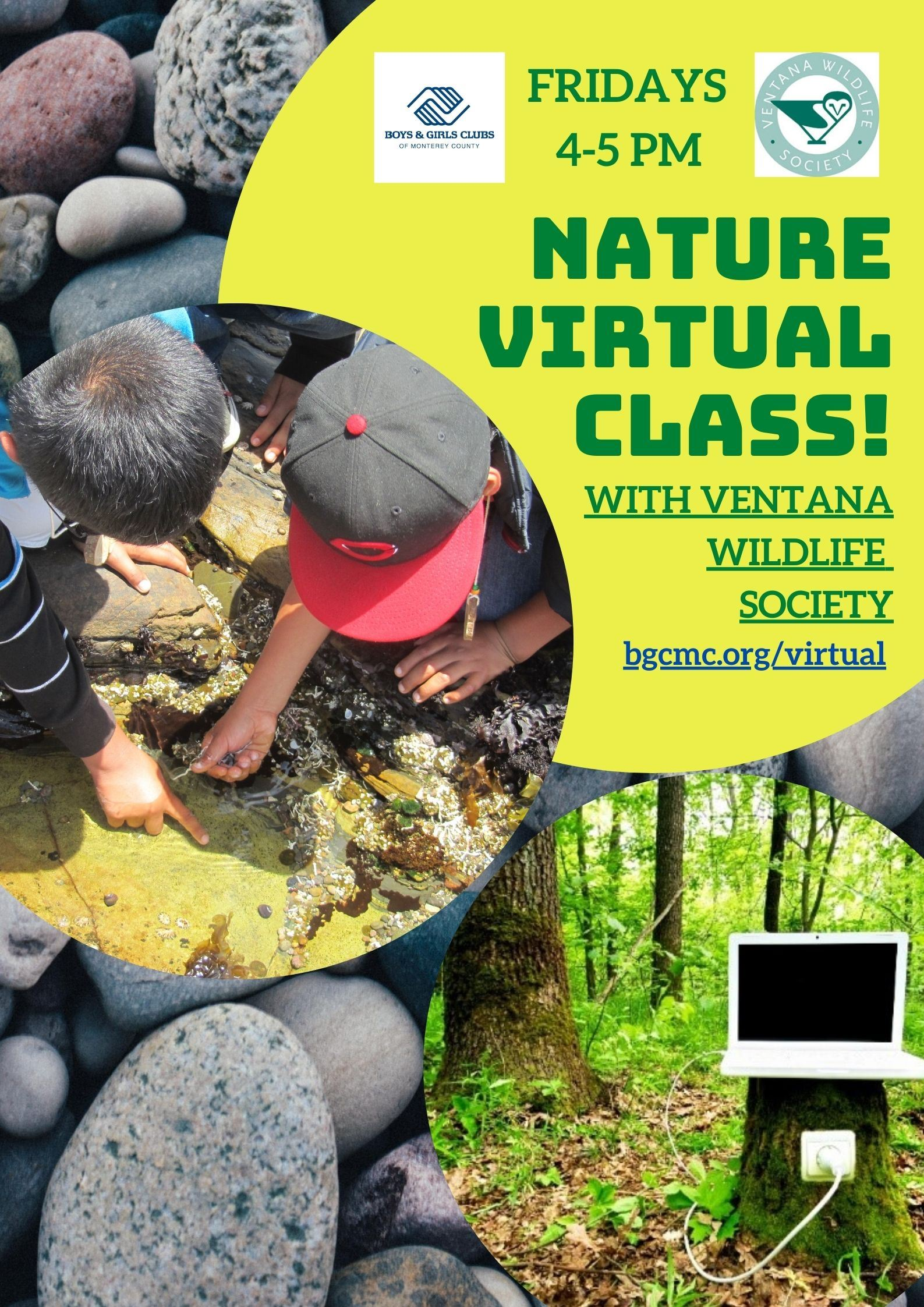 Ventana Virtual Nature Flier
